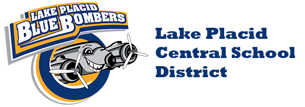 district logo with bomber 600